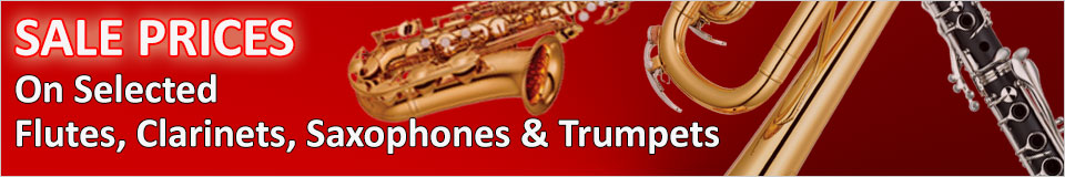 wind instrument sale