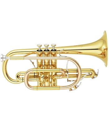 New Neo Cornets in stock